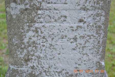 SPRAGUE, DELIA A. - Branch County, Michigan | DELIA A. SPRAGUE - Michigan Gravestone Photos