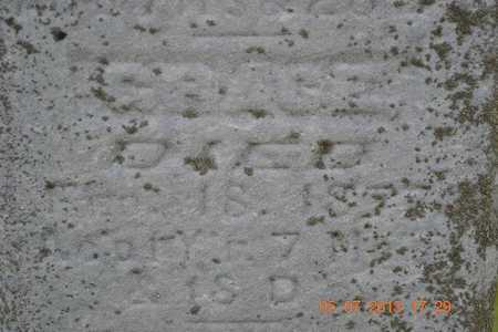 SPRAGUE, GRACE - Branch County, Michigan | GRACE SPRAGUE - Michigan Gravestone Photos