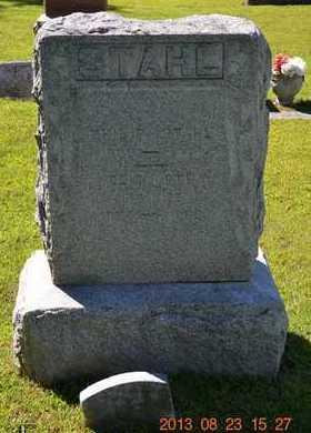 STAHL, ELIZABETH - Branch County, Michigan | ELIZABETH STAHL - Michigan Gravestone Photos