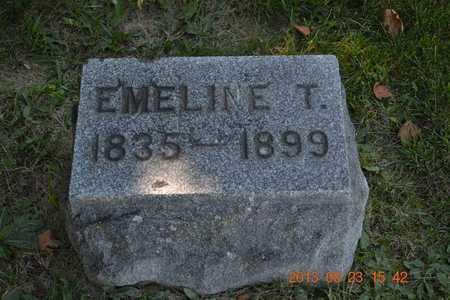 STEPHENSON, EMELINE T. - Branch County, Michigan | EMELINE T. STEPHENSON - Michigan Gravestone Photos