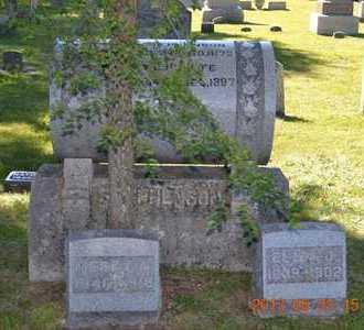 STEPHENSON, FAMILY - Branch County, Michigan   FAMILY STEPHENSON - Michigan Gravestone Photos