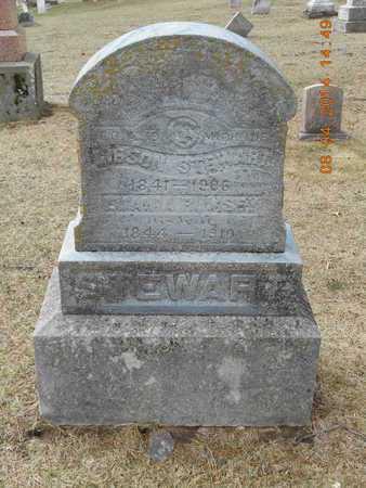 RUMSEY STEWART, LUANIA - Branch County, Michigan | LUANIA RUMSEY STEWART - Michigan Gravestone Photos