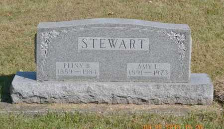 STEWART, AMY L. - Branch County, Michigan | AMY L. STEWART - Michigan Gravestone Photos