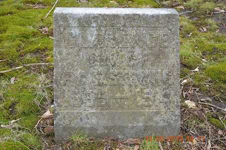STRONG, CLARENCE - Branch County, Michigan | CLARENCE STRONG - Michigan Gravestone Photos