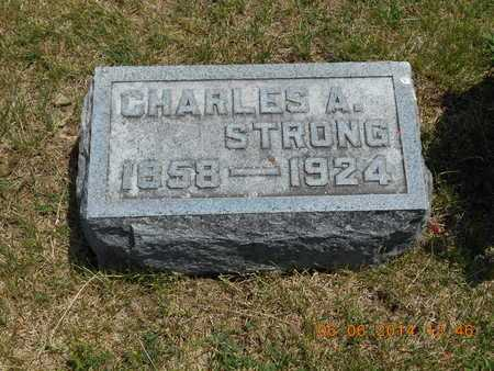 STRONG, CHARLES A. - Branch County, Michigan | CHARLES A. STRONG - Michigan Gravestone Photos