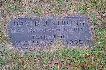 STRONG, DAVID J. - Branch County, Michigan | DAVID J. STRONG - Michigan Gravestone Photos
