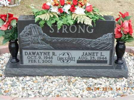 STRONG, JANET L. - Branch County, Michigan | JANET L. STRONG - Michigan Gravestone Photos