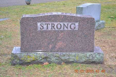 STRONG, FAMILY - Branch County, Michigan | FAMILY STRONG - Michigan Gravestone Photos