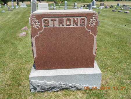 STRONG, FAMILY - Branch County, Michigan | FAMILY STRONG - Michigan Gravestone Photos