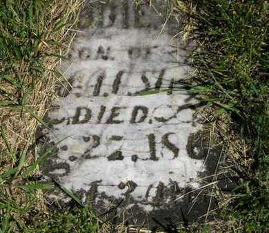 STRONG, FREDDIE A. - Branch County, Michigan   FREDDIE A. STRONG - Michigan Gravestone Photos