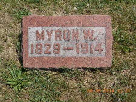 STRONG, MYRON W. - Branch County, Michigan | MYRON W. STRONG - Michigan Gravestone Photos