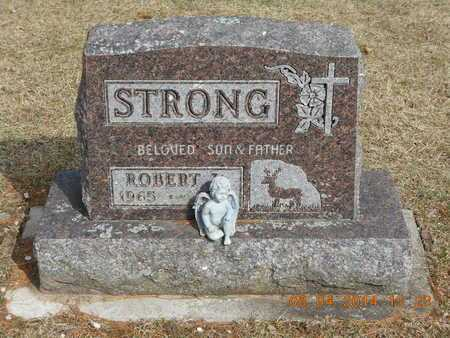STRONG, ROBERT - Branch County, Michigan | ROBERT STRONG - Michigan Gravestone Photos