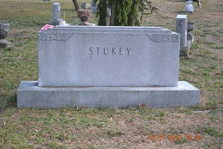 STUKEY, FAMILY - Branch County, Michigan | FAMILY STUKEY - Michigan Gravestone Photos