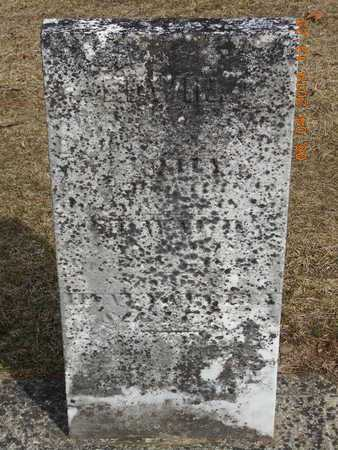 SWIFT, EDWIN - Branch County, Michigan | EDWIN SWIFT - Michigan Gravestone Photos