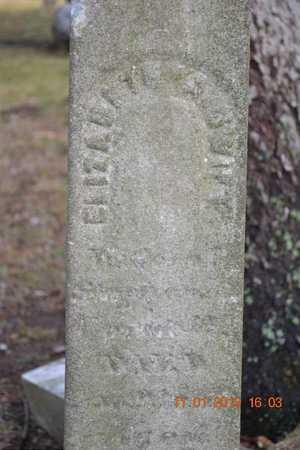 SWIFT, ELIZABETH A. - Branch County, Michigan | ELIZABETH A. SWIFT - Michigan Gravestone Photos