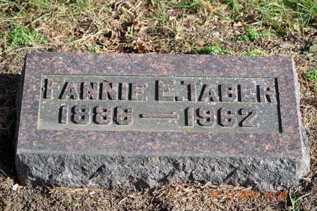 TABER, FANNIE E. - Branch County, Michigan   FANNIE E. TABER - Michigan Gravestone Photos