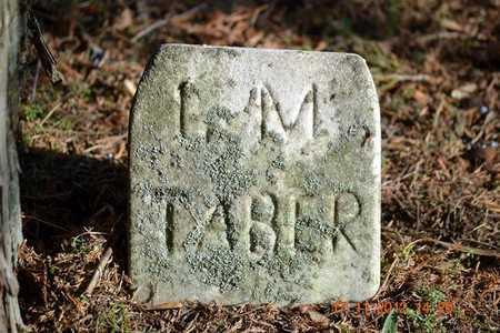 TABER, L.M. - Branch County, Michigan   L.M. TABER - Michigan Gravestone Photos