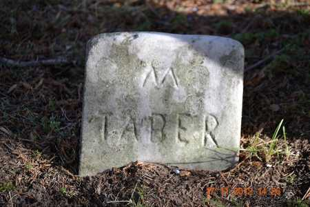 TABER, M. - Branch County, Michigan | M. TABER - Michigan Gravestone Photos