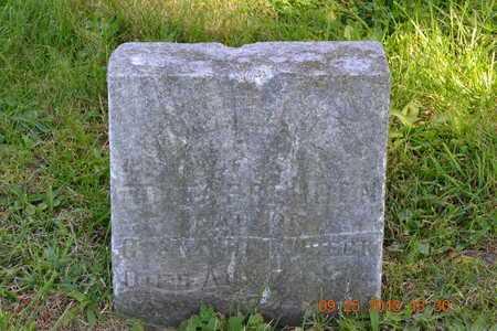 TAPPENDEN, AMELIA - Branch County, Michigan | AMELIA TAPPENDEN - Michigan Gravestone Photos