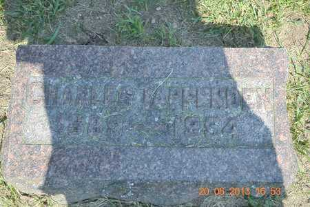 TAPPENDEN, CHARLES - Branch County, Michigan | CHARLES TAPPENDEN - Michigan Gravestone Photos
