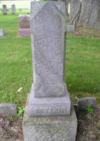 TAYLOR, ELI - Branch County, Michigan | ELI TAYLOR - Michigan Gravestone Photos