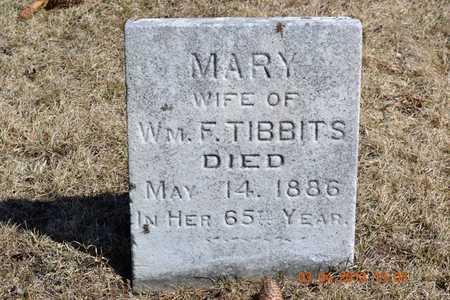 OLNEY TIBBITS, MARY - Branch County, Michigan | MARY OLNEY TIBBITS - Michigan Gravestone Photos