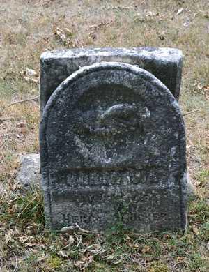 CORNWELL TUCKER, HORTENSIA - Branch County, Michigan   HORTENSIA CORNWELL TUCKER - Michigan Gravestone Photos