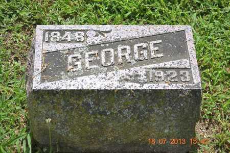 TUTTLE, GEORGE - Branch County, Michigan | GEORGE TUTTLE - Michigan Gravestone Photos