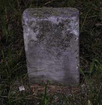 UNKNOWN, UNKNOWN - Branch County, Michigan   UNKNOWN UNKNOWN - Michigan Gravestone Photos