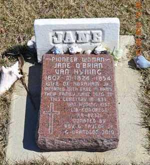 O'BRIAN VAN HYNING, JANE - Branch County, Michigan | JANE O'BRIAN VAN HYNING - Michigan Gravestone Photos