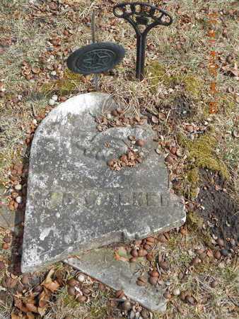 WALKER, W.B. - Branch County, Michigan | W.B. WALKER - Michigan Gravestone Photos