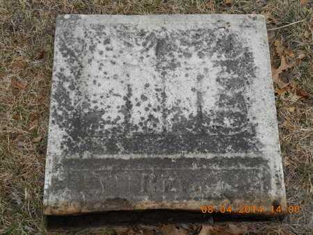 WALLIS, JOHN BUCKERIDGE - Branch County, Michigan | JOHN BUCKERIDGE WALLIS - Michigan Gravestone Photos