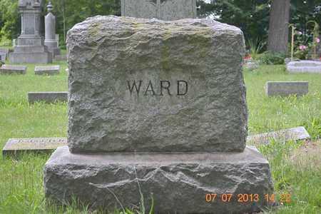 WARD, FAMILY - Branch County, Michigan | FAMILY WARD - Michigan Gravestone Photos
