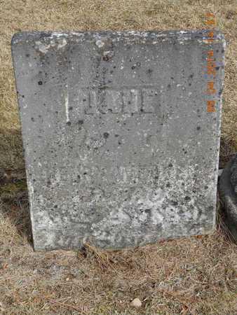 WEAVER, JANE - Branch County, Michigan | JANE WEAVER - Michigan Gravestone Photos