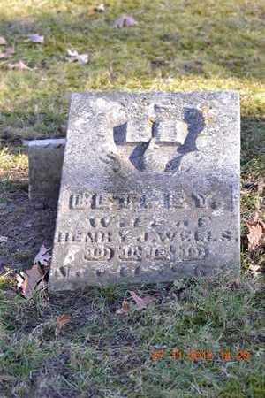 WELLS, BETSEY - Branch County, Michigan | BETSEY WELLS - Michigan Gravestone Photos