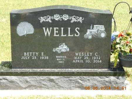 WELLS, WESLEY C. - Branch County, Michigan | WESLEY C. WELLS - Michigan Gravestone Photos