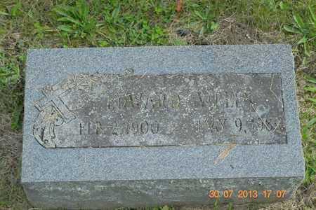 WELLS, EDWARD - Branch County, Michigan | EDWARD WELLS - Michigan Gravestone Photos