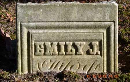 WELLS, EMILY J. - Branch County, Michigan | EMILY J. WELLS - Michigan Gravestone Photos