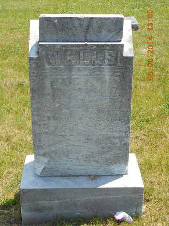 WELLS, FAMILY - Branch County, Michigan | FAMILY WELLS - Michigan Gravestone Photos