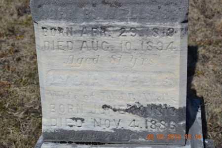WELLS, LYDIA - Branch County, Michigan | LYDIA WELLS - Michigan Gravestone Photos
