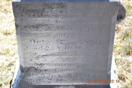 WELLS, LEONARD JASON - Branch County, Michigan | LEONARD JASON WELLS - Michigan Gravestone Photos
