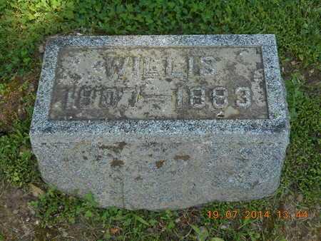 WELLS, WILLIS - Branch County, Michigan | WILLIS WELLS - Michigan Gravestone Photos
