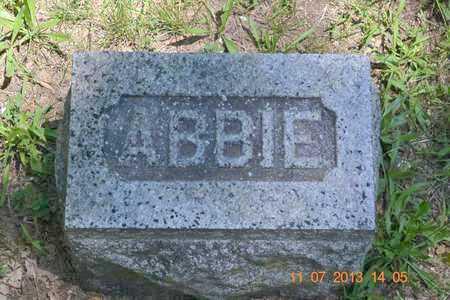WILLIAMS, ABBIE C. - Branch County, Michigan | ABBIE C. WILLIAMS - Michigan Gravestone Photos