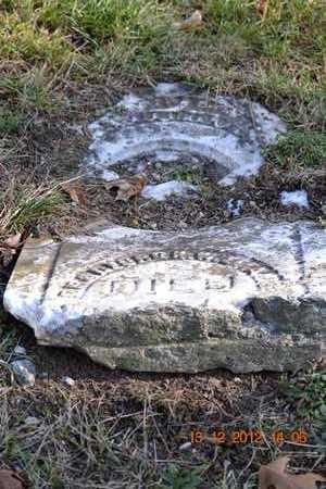 WILLIAMS, BRADFORD - Branch County, Michigan | BRADFORD WILLIAMS - Michigan Gravestone Photos