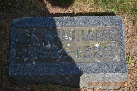WILLIAMS, C.F. - Branch County, Michigan | C.F. WILLIAMS - Michigan Gravestone Photos