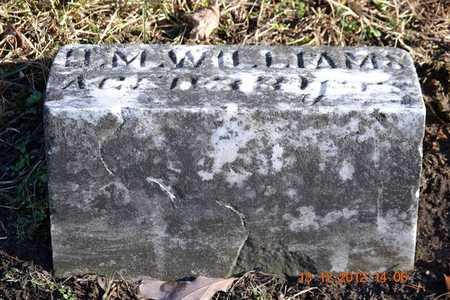WILLIAMS, D.M. - Branch County, Michigan | D.M. WILLIAMS - Michigan Gravestone Photos