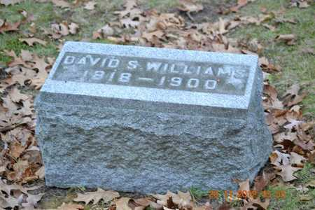 WILLIAMS, DAVID S. - Branch County, Michigan | DAVID S. WILLIAMS - Michigan Gravestone Photos