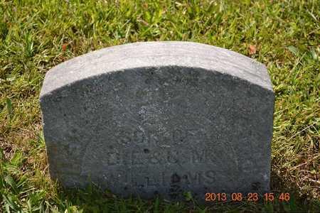 WILLIAMS, D. - Branch County, Michigan | D. WILLIAMS - Michigan Gravestone Photos