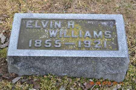 WILLIAMS, ELVIN H. - Branch County, Michigan | ELVIN H. WILLIAMS - Michigan Gravestone Photos