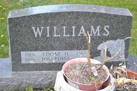 WILLIAMS, EDGAR H. - Branch County, Michigan | EDGAR H. WILLIAMS - Michigan Gravestone Photos
